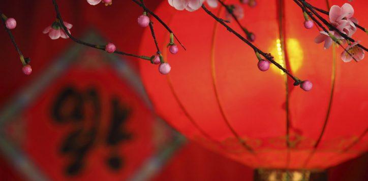 chinese-lantern-2